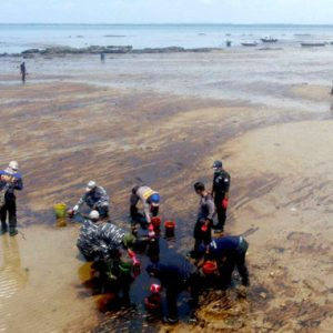 Massive Environmental and Health Damage from Oil Spill in Borneo