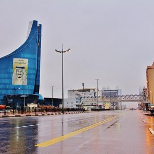 Saudi Arabia Objects to IMO Negotiations on Emissions