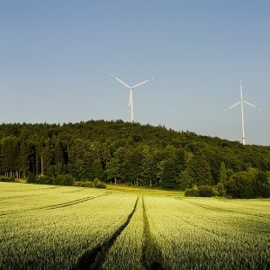 Public Consultation to Help Develop Climate Change Strategy
