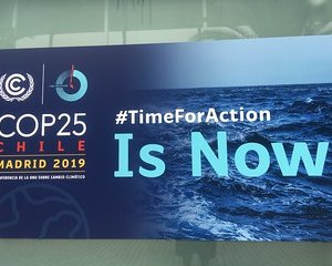 Saudi Arabia Joins with Others to Block Progress at COP 25