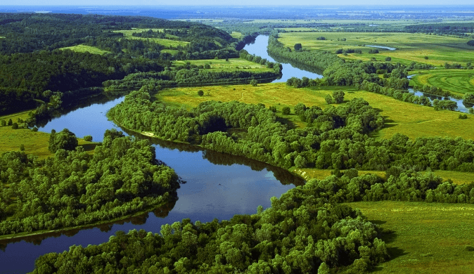 Destruction of Animal and Plant Habitats Threaten Biodiversity in Ukraine