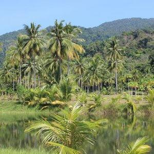 Thailand Prepares Its First-Ever Climate Change Legislation